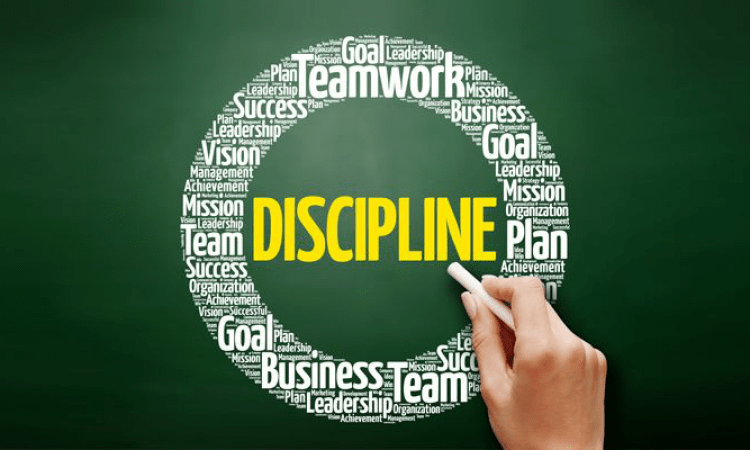 Do we really need trading plan and discipline?